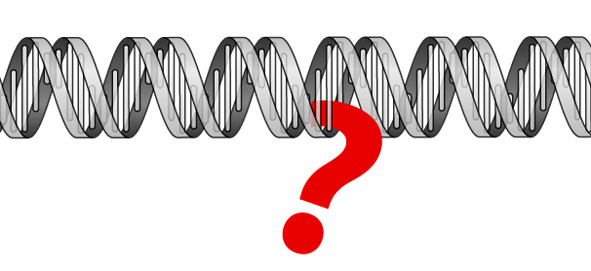 Question mark hanging on a double helix