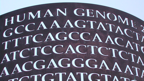 carving on side of building with human genetic code