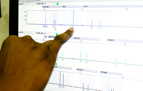 A DNA technician reviews genetic measurements on a monitor at the state Crime Laboratory in Jackson, MI.