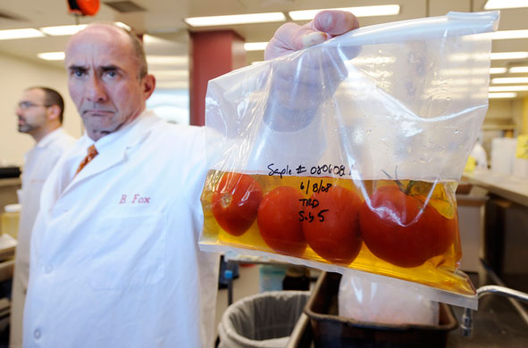 Mark Roh, U.S. Food and Drug Administration's acting regional director holds a bag of tomatoes being tested for salmonella bacteria at FDA's southwest regional research lab, in Irvine, Calif., Monday June 9, 2008, where microbiologists are working to trace the source of the outbreak