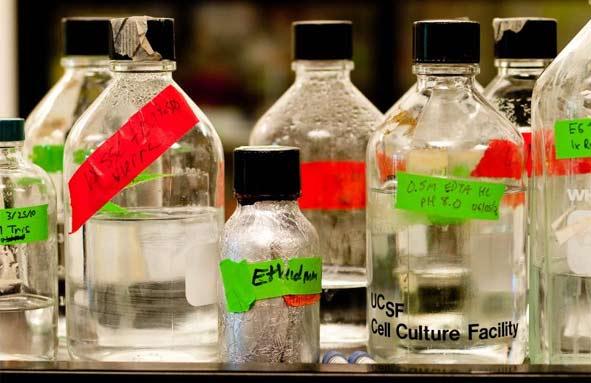 cell culture vials